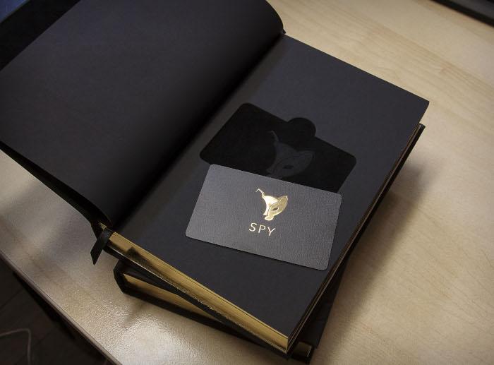 Подарочная книга с секретом SPY